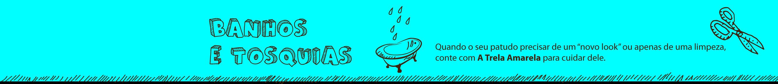 header-banhos-e-tosquias